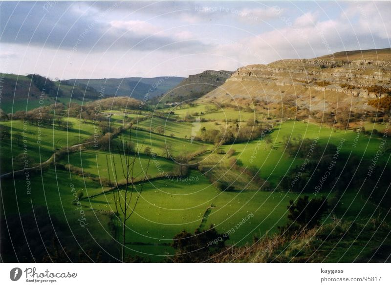 Nature Green Spring Think Landscape Idyll Wales