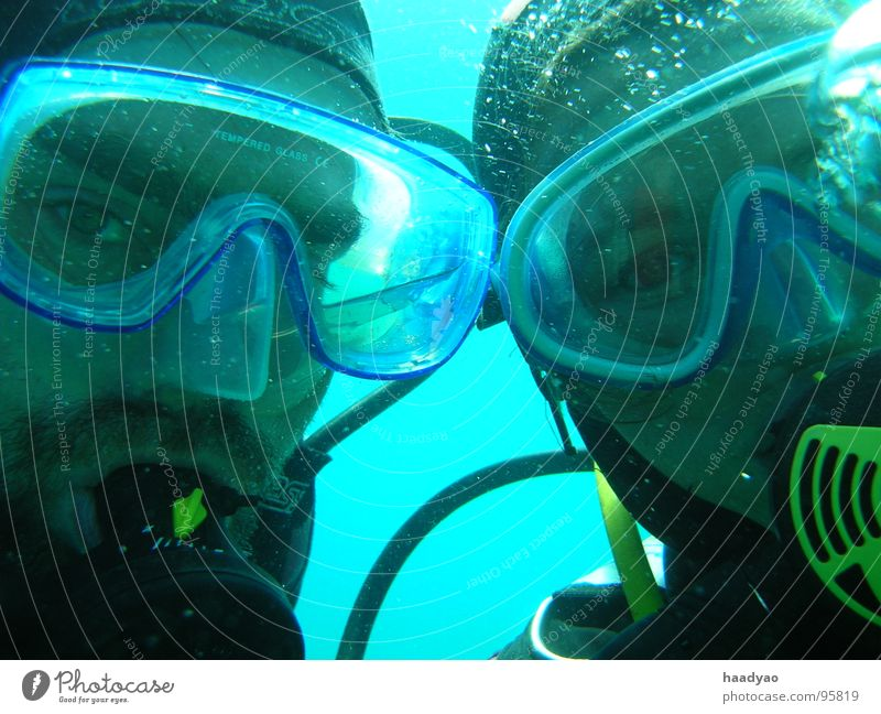 submerged Diver Man Woman Ocean Atlantic Ocean Vacation & Travel Turquoise Together Underwater photo Joy Aquatics Water Clarity Freedom Adults