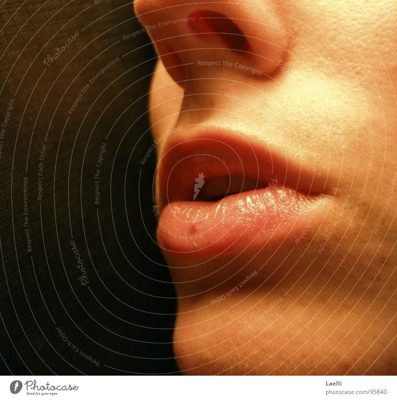 Woman Red Black Mouth Skin Pink Nose Lips Pallid Chin Nostril