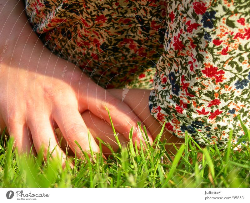 Hand Flower Colour Relaxation Meadow Contentment
