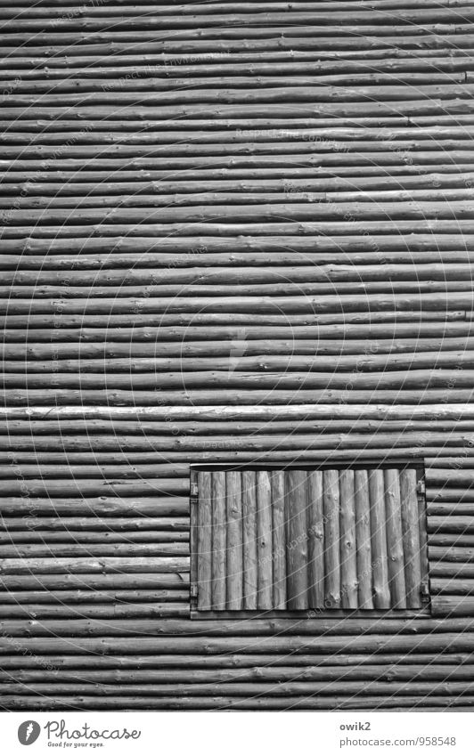 Closed event Hut Wooden hut Wall (barrier) Wall (building) Facade Window Firm Ignorant Equal Protection Exclude Stay Black & white photo Exterior shot Close-up