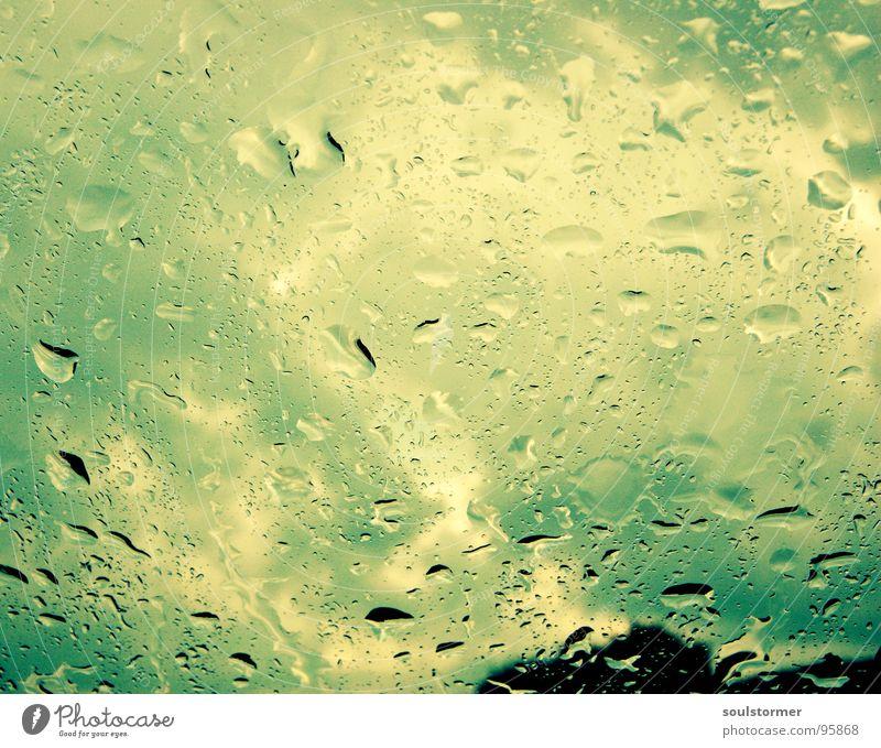 Sky Blue Water White Green Tree Clouds Black Yellow Window Car Car Window Rain Fear Wet Dangerous