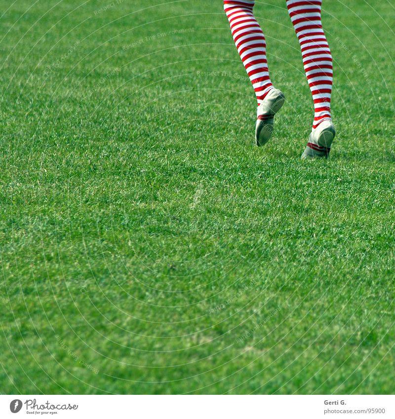 Human being Green Joy Meadow Grass Movement Legs Going Walking Lawn Stockings Tights Striped Pole Gymnastics Calf
