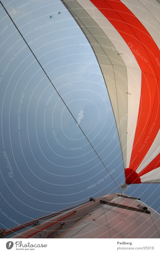 Sail and Fly Sailing Aquatics Air Airplane Adventure sailing on the ijsselmeer gennaker coloured sails high speed good feeling Wind strokes the nose Freedom Sky