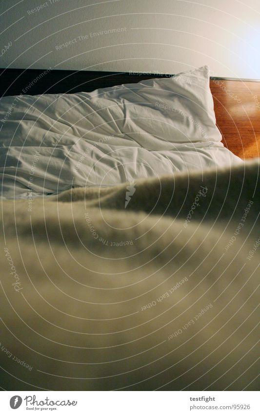 Calm Room Sleep Stop Hotel Bedroom Hostel Journey through