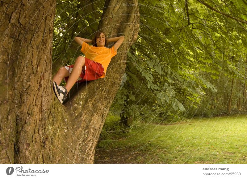 Youth (Young adults) Tree Green Red Calm Forest Relaxation Meadow Above Park Orange Bushes Branch To enjoy Clearing Rest