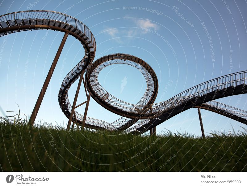 Wild Mouse Lifestyle Leisure and hobbies Vacation & Travel Tourism Trip Art Environment Cloudless sky Beautiful weather Grass Meadow Manmade structures