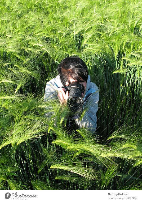 Fields of Green Man Barley Crouch Take a photo Summer Human being Camera EOS Fry2k Nature agricultural sciences Observe Hair and hairstyles Sit Dirty