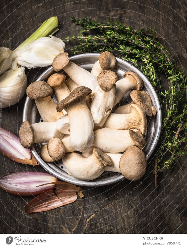 Herbseitling mushrooms with herbs and spices Food Vegetable Soup Stew Herbs and spices Nutrition Lunch Organic produce Vegetarian diet Diet Bowl Style Design