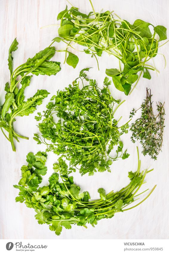 Fresh green herbs on white wooden table Food Vegetable Lettuce Salad Herbs and spices Nutrition Organic produce Vegetarian diet Diet Style Design Healthy Eating