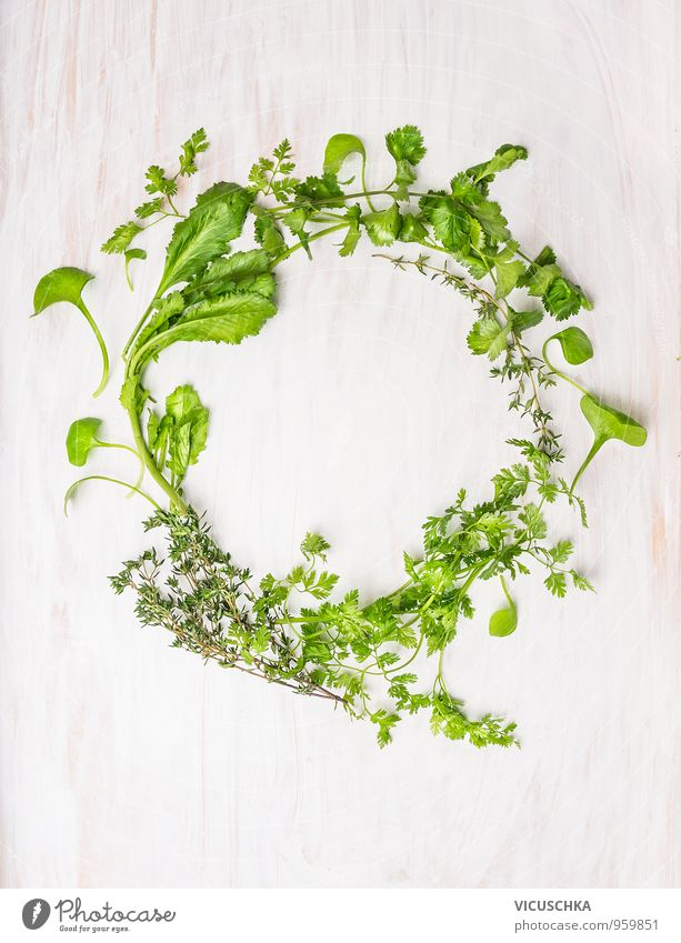 Healthy wreath of green herbs Food Vegetable Lettuce Salad Herbs and spices Nutrition Organic produce Vegetarian diet Summer Nature Plant Jump Design Oregano