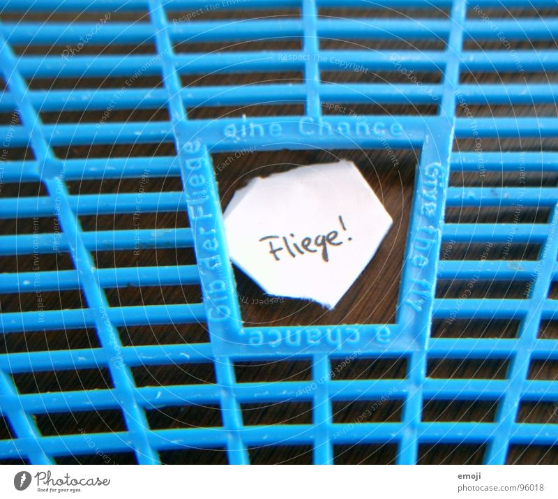 Blue Joy Life Death Funny Fly Piece of paper Grid Live Survive Chance