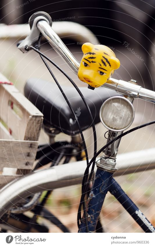 With tiger strength ahead Lifestyle Style Design Exotic Cycling Academic studies Town Transport Bicycle Esthetic Movement Bell Tiger Colour photo Exterior shot