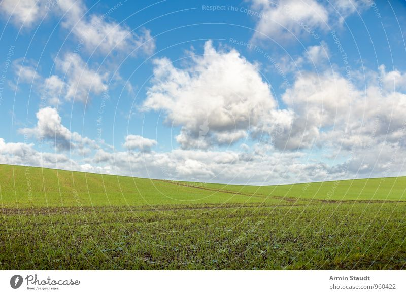 Plain field Environment Nature Landscape Sky Clouds Spring Beautiful weather Agricultural crop Field Hill Growth Authentic Far-off places Infinity Natural