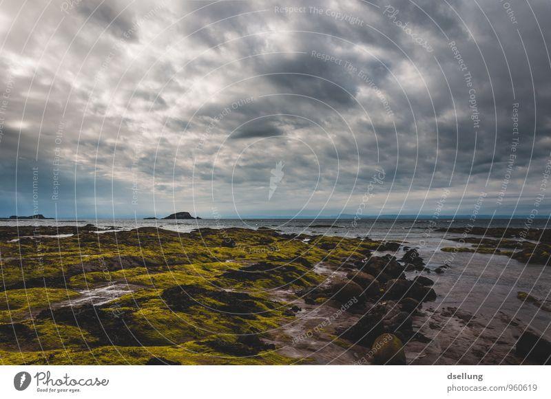 Sky Nature Blue Green Summer Ocean Landscape Clouds Beach Dark Cold Environment Coast Spring Natural Gray