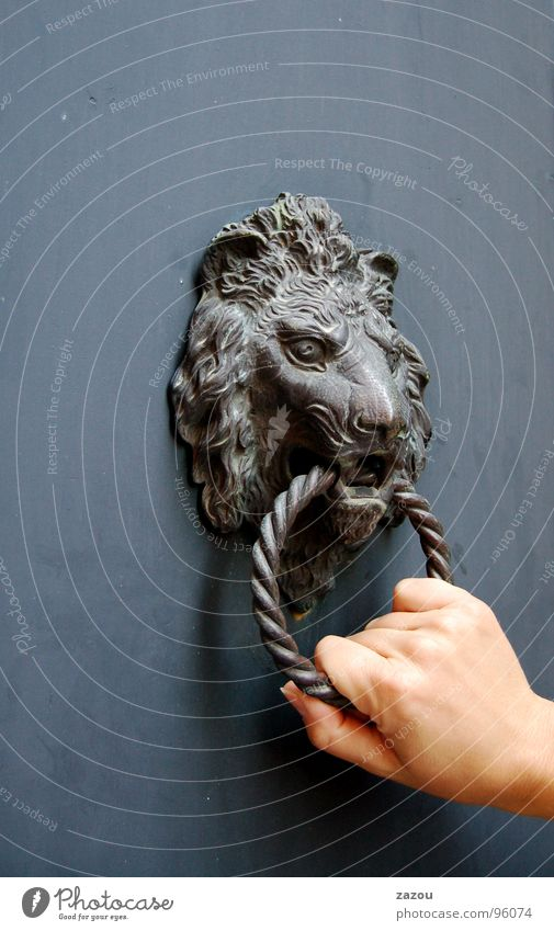 visiting Door Door handle Knocker Visitor Hand Lion Entrance Mysterious Obscure Bell Lion's head Detail Action Loud Noise Decoration Register Knock at the door