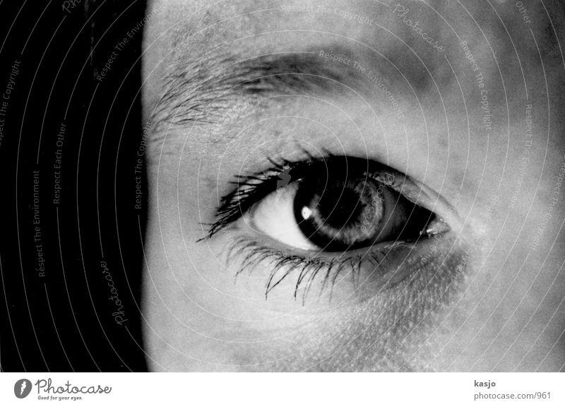 Woman Eyes Feminine Head