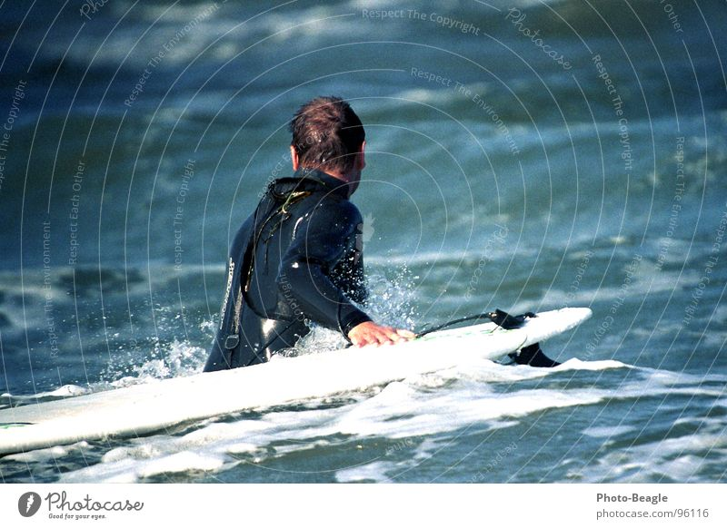 Water Ocean Sports Cold Playing Lake Waves Wind Wet Surfing Athletic Wooden board Baltic Sea North Sea Surfer