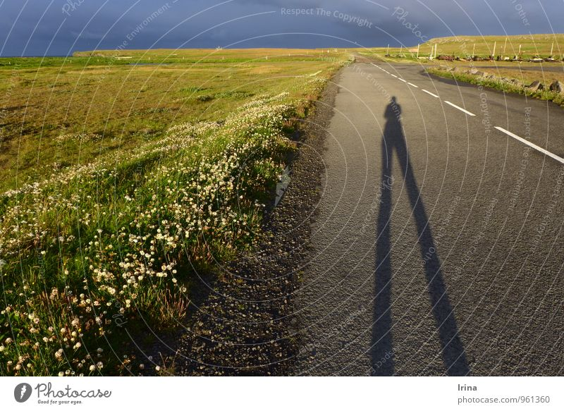 I'll make you legs. To go for a walk Hiking Sunrise Sunset Iceland Fishing village Deserted Street Horizon Dusk Drop shadow Legs Meadow Coast Roadside