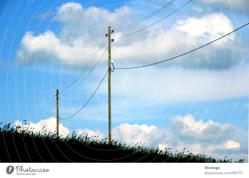 Sky Blue Clouds Meadow Air Bird Earth Electricity Floor covering Connection Electricity pylon Transmission lines