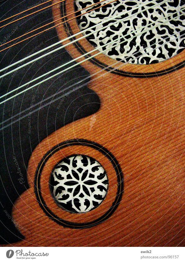 Arabic Lute Elegant Style Design Exotic already Music Art Culture Musical instrument Tone wood Plastic Ornament Arabesques Fantastic Near Harmonious