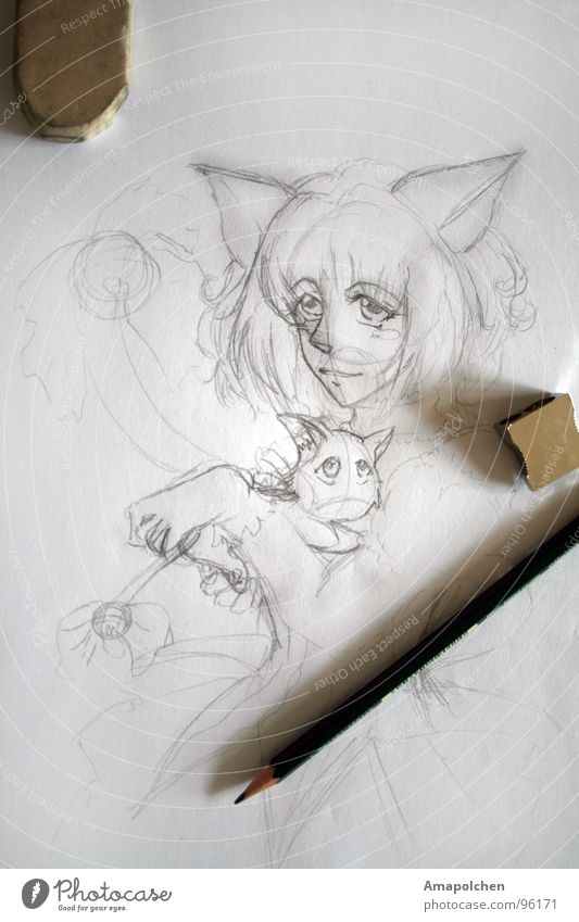 Cat Youth (Young adults) White Style Wood Art Gray Line Work and employment Design Leisure and hobbies Beginning Creativity Idea Culture Paper