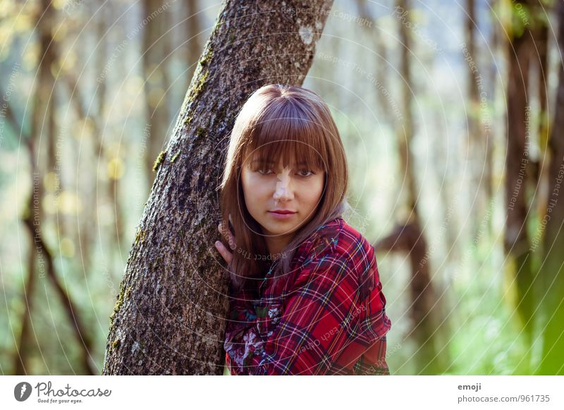 favourite place Feminine Young woman Youth (Young adults) 1 Human being Environment Nature Landscape Autumn Beautiful weather Tree Forest Natural Tree trunk