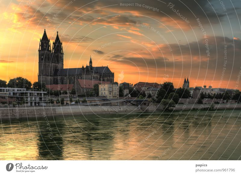 Magdeburg Cathedral in the evening light Water Sky Clouds Sun Sunrise Sunset Sunlight Summer Beautiful weather Tree River bank Capital city Old town Populated