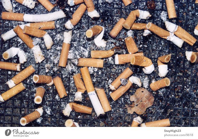Smoking Smoke Cigarette Disgust Ashtray Quit Cigarette Butt