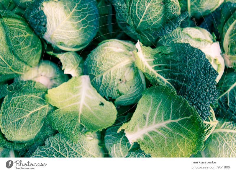 white cabbage Food Vegetable Cabbage White cabbage Healthy Eating Nutrition Lunch Dinner Organic produce Vegetarian diet Diet Slow food Lifestyle Fitness