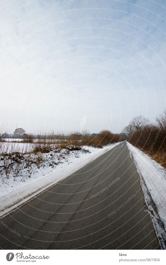 Sky Nature Tree Landscape Clouds Winter Cold Environment Street Snow Lanes & trails Line Ice Field Transport Bushes
