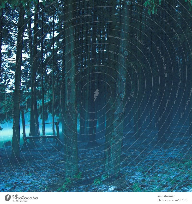 Blue Animal Forest Meadow Moody Rain Field Fog Floor covering Magic Witch Hail Manger Enchanted forest Watering Hole
