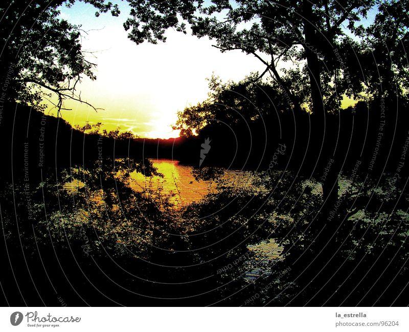 Water Sun Landscape Lakeside Dusk Glimmer Ambience