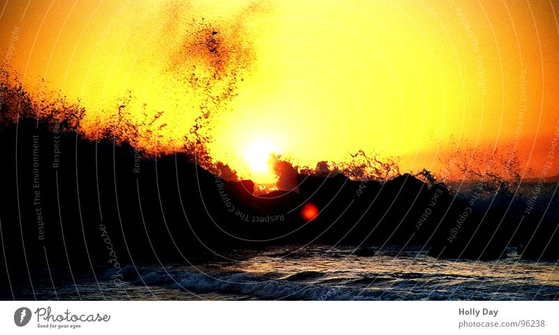Water Sun Ocean Summer Beach Vacation & Travel Black Orange Waves Coast Rock Longing Sunset Surf Los Angeles