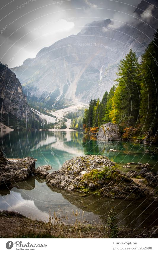 wild lake Nature Elements Water Sky Clouds Sunlight Autumn Tree Bushes Wild plant Forest Rock Mountain Peak Lakeside Authentic Moss Reflection Dolomites