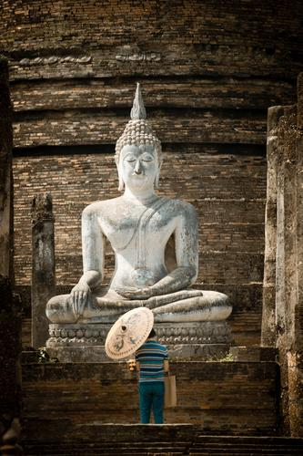 rest Man Adults 1 Human being Ruin Temple Tourist Attraction Religion and faith Calm Decline Past Buddha Ayutthaya Thailand Prayer Warmth Sunshade Asia