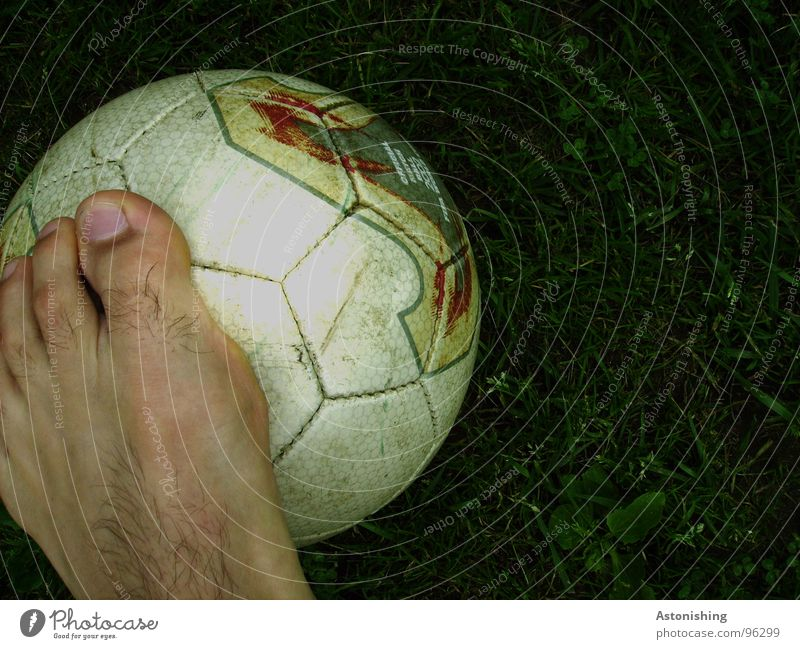 Football Skin Sports Ball sports Soccer Foot ball Legs Feet Leather Playing Stand Dark Bright Round Green White Toes Toenail Lawn Meadow Honeycomb