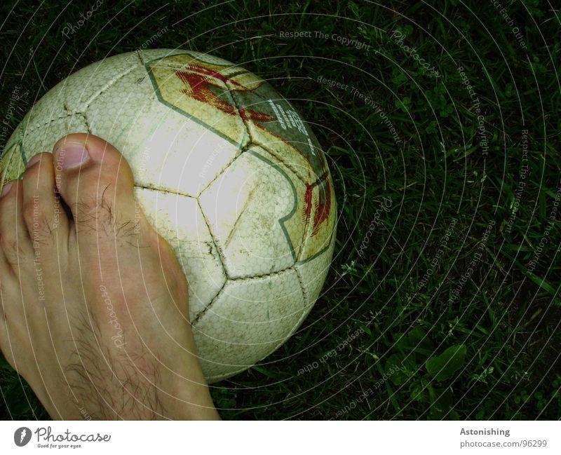 White Green Meadow Dark Sports Playing Grass Legs Bright Feet Skin Soccer Foot ball Stand Round Ball
