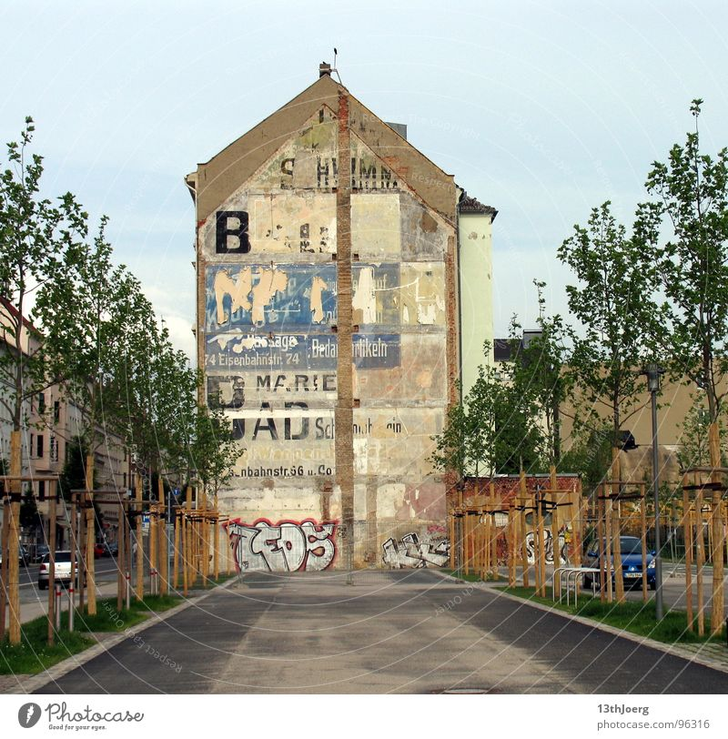 wall design House (Residential Structure) Advertising Industry Avenue Tree Town Leipzig East Wall (building) Demography Dismantling Derelict Germany Street