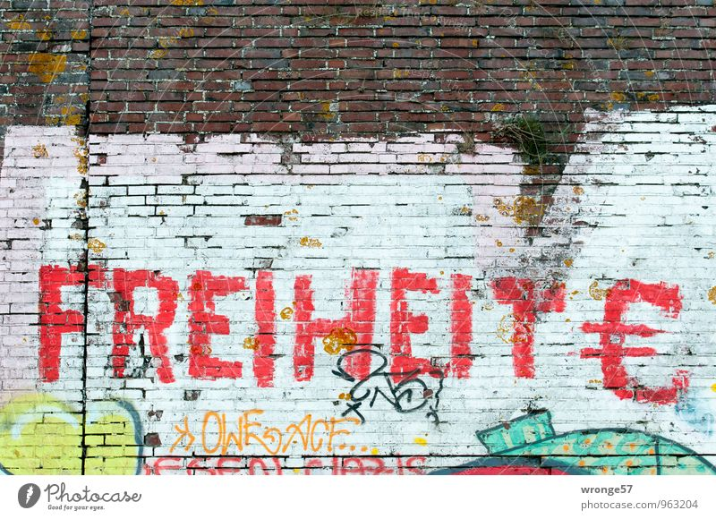 Red Wall (building) Dye Graffiti Wall (barrier) Freedom Characters Letters (alphabet) Euro symbol Brick wall Sprayed