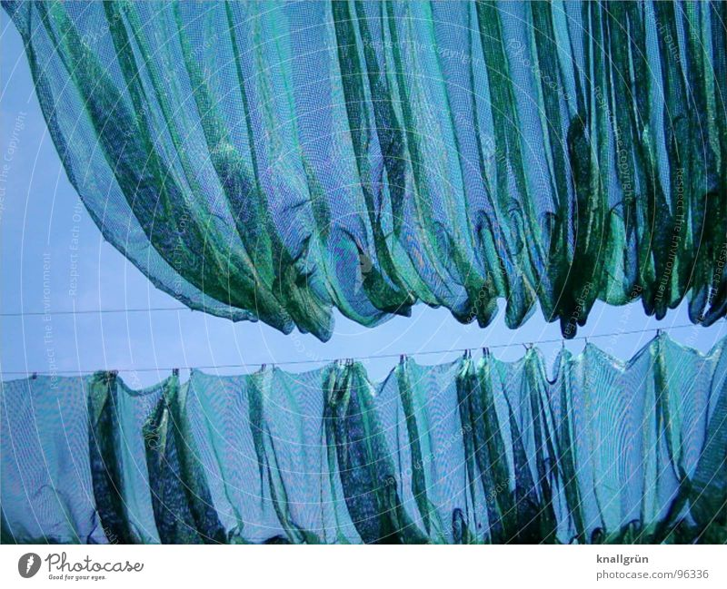 Sky Green Blue Summer Network Net Cloth Sunshade Nerviness Weather protection Covers (Construction) Folds Screening