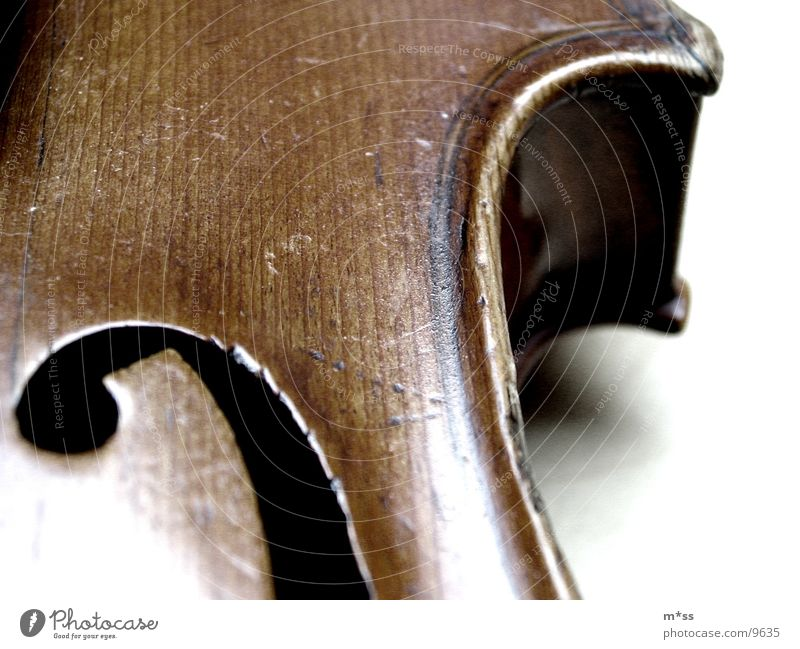 violin_1 Violin Things Musical instrument