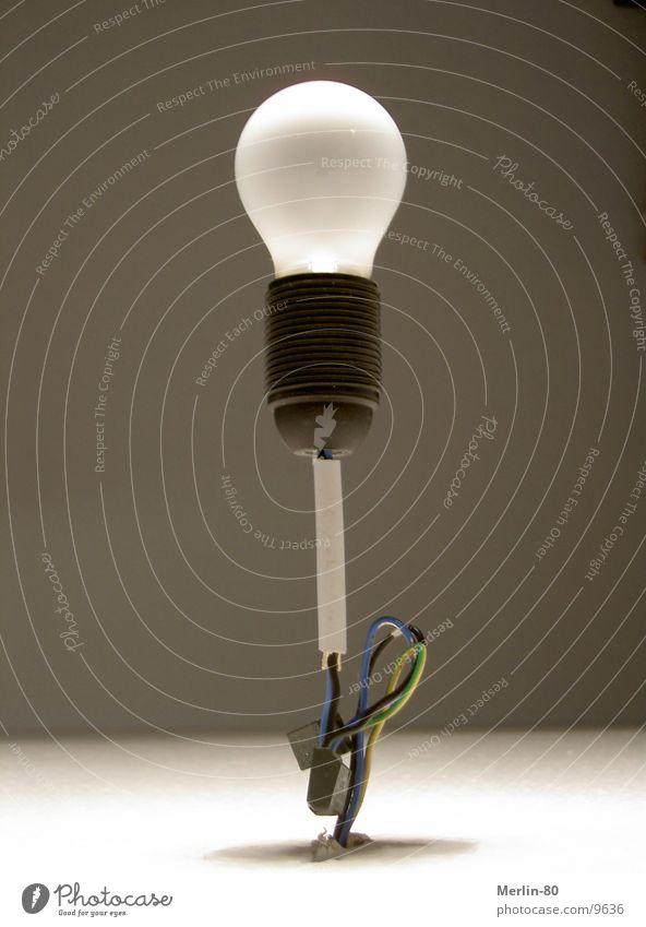 Lamp Speed Stand Living or residing Blanket Electric bulb Bracket