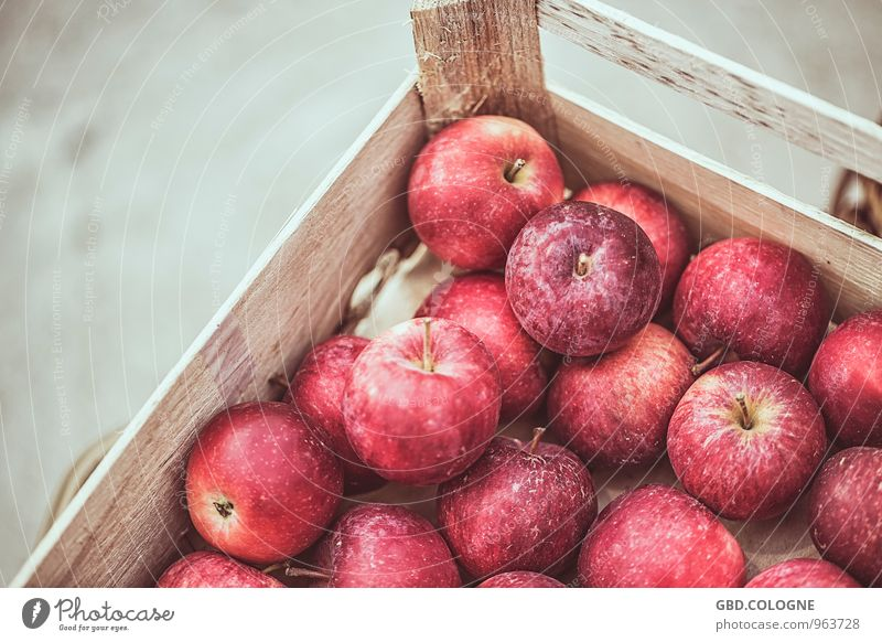 Nature Red Life Autumn Natural Healthy Fruit Fresh Nutrition Round Delicious Harvest Apple Vegetarian diet Crate Juicy