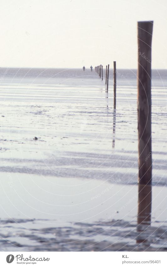 Wadden Sea Low tide Wood Vacation & Travel Tideway Dangerous Horizon Mirror Border Hiking Fence Beach Coast Mud flats North Sea Far-off places Sand Pole Threat