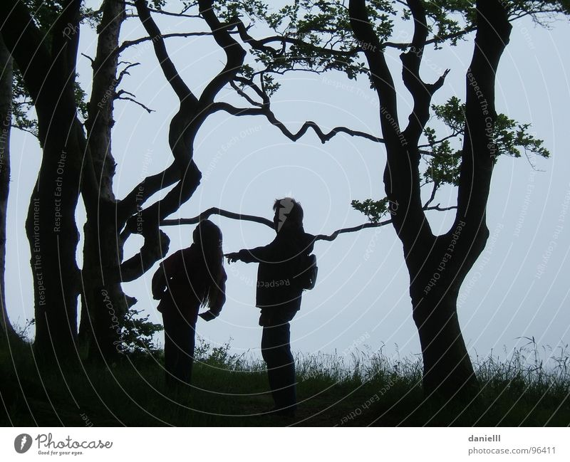 fairytale forest Fairy tale Forest Child Family & Relations Adventure Leisure and hobbies Tree Hiking Discover Twilight Night Black & white photo Trust