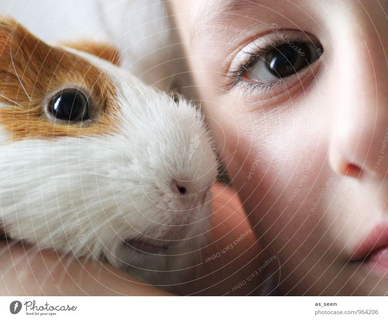 friends Feminine Girl Infancy Life Face Eyes 1 Human being 3 - 8 years Child Animal Pet Animal face Guinea pig Esthetic Uniqueness Cuddly Small Cute Positive