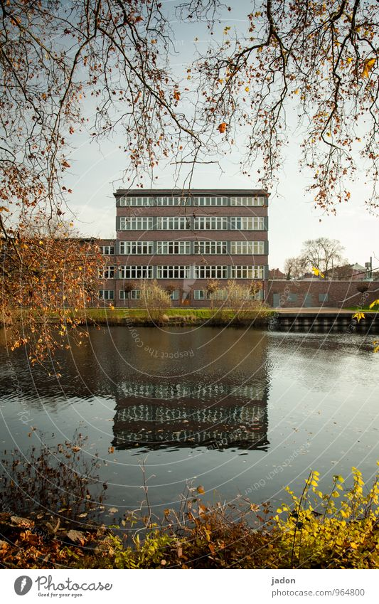 bauhaus. Elegant Style Design Office Economy Business Nature Landscape Water Autumn Beautiful weather Tree Bushes River bank Havel Town