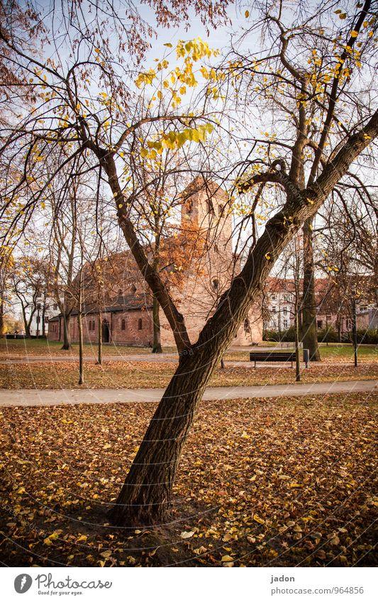 St Nicholas Landscape Plant Autumn Beautiful weather Tree Leaf Park Church Manmade structures Building Architecture Tourist Attraction Landmark Lanes & trails