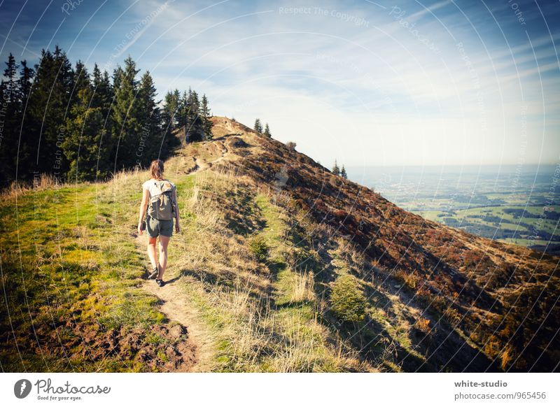 wanderlust Human being Young woman Youth (Young adults) 18 - 30 years Adults Hiking Exterior shot Adventure adventurous Vacation & Travel Public Holiday